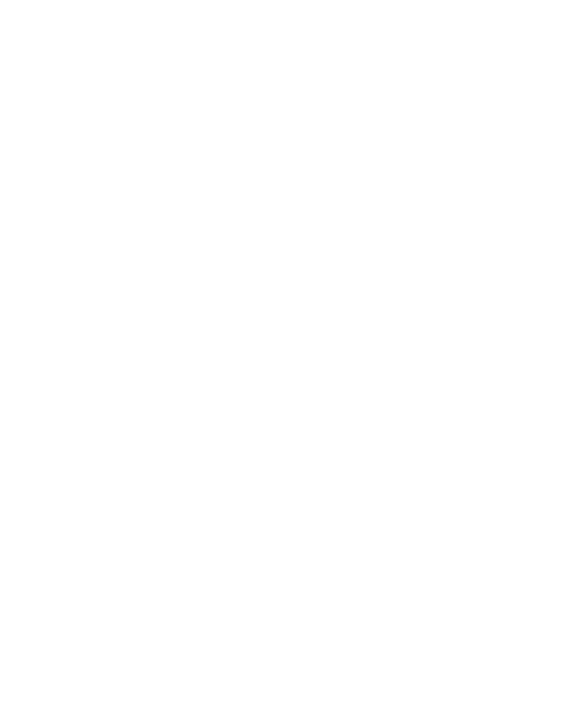Sur International Investment